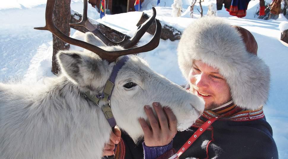 Jabsco Toilet Aanbieding : Feed the reindeer destination snowman
