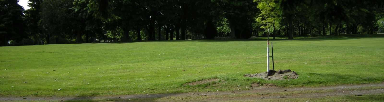 Foster Memorial Park