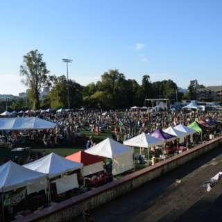 22nd Annual Brewgrass Festival