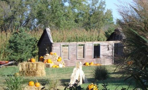 Corn maze | pumpkin patch | hours & prices | kansas maze.