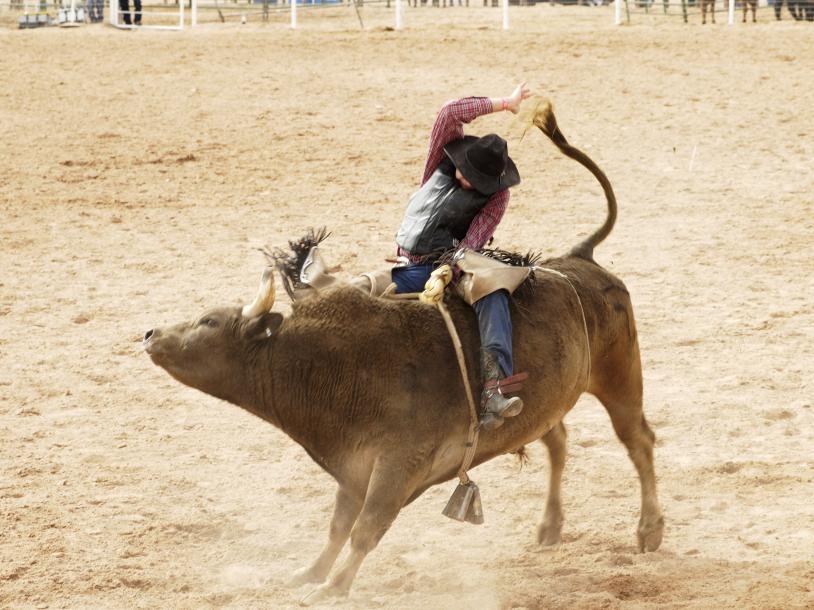 Tuff Hedeman Championship Bull Riding