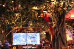 Reviews of Your Favorite Restaurants in Tukwila, Washington: Rainforest Cafe