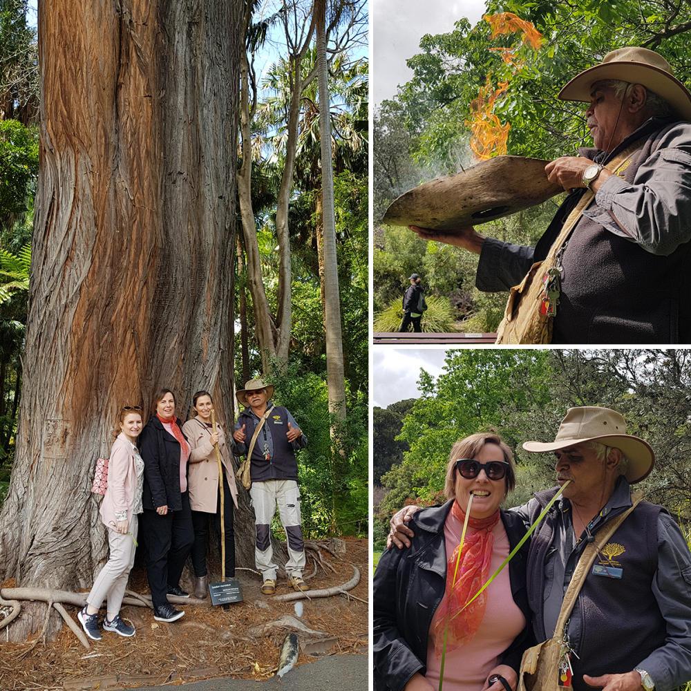Indigenous Heritage Walk at the Royal Botanical Gardens