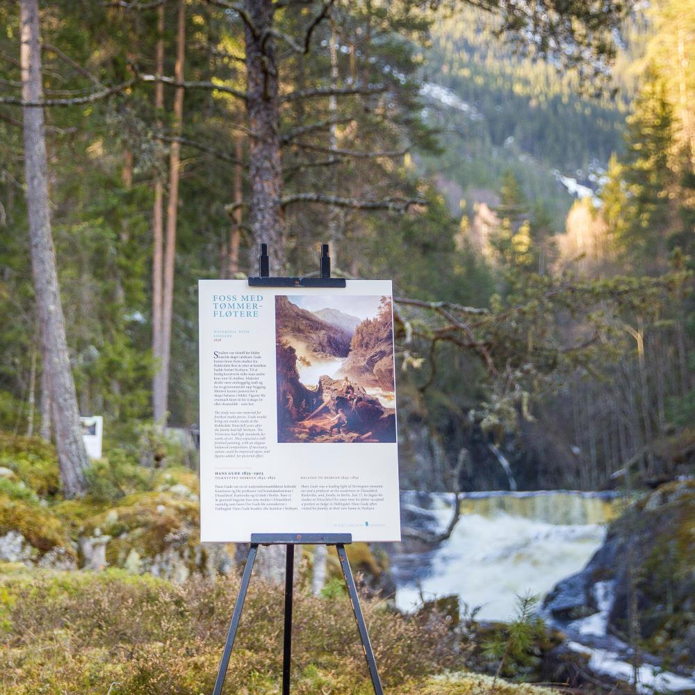 Art landscape Nesbyen