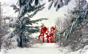 Snowfall in Grand Rapids, MI during winter