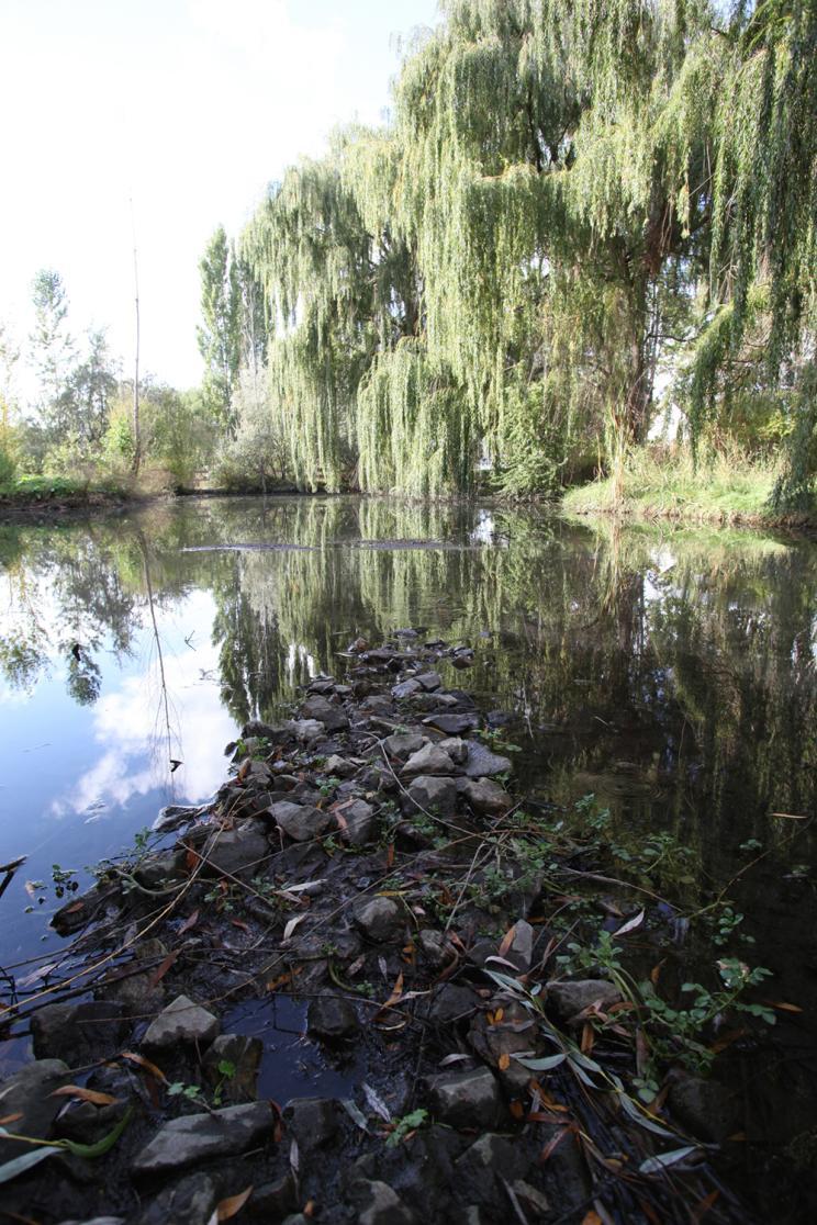 Chichester Park