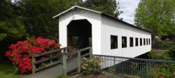 Centennial Covered Bridge, Cottage Grove, Willamette Valley, Spring Flowers
