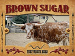 Brown Sugar Longhorn