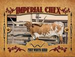 Trading Card Imperial Chex