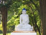 hudson-valley-buddhism-and-the-earth.JPG