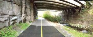 Autumnal Run on the Des Moines Creek Trail