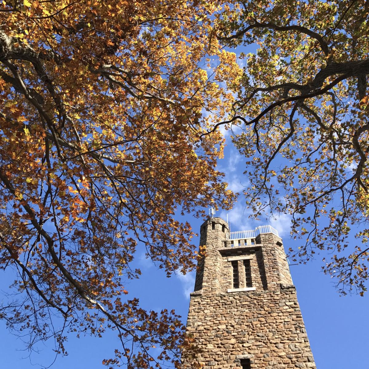 Fall at Bowman's Hill Tower