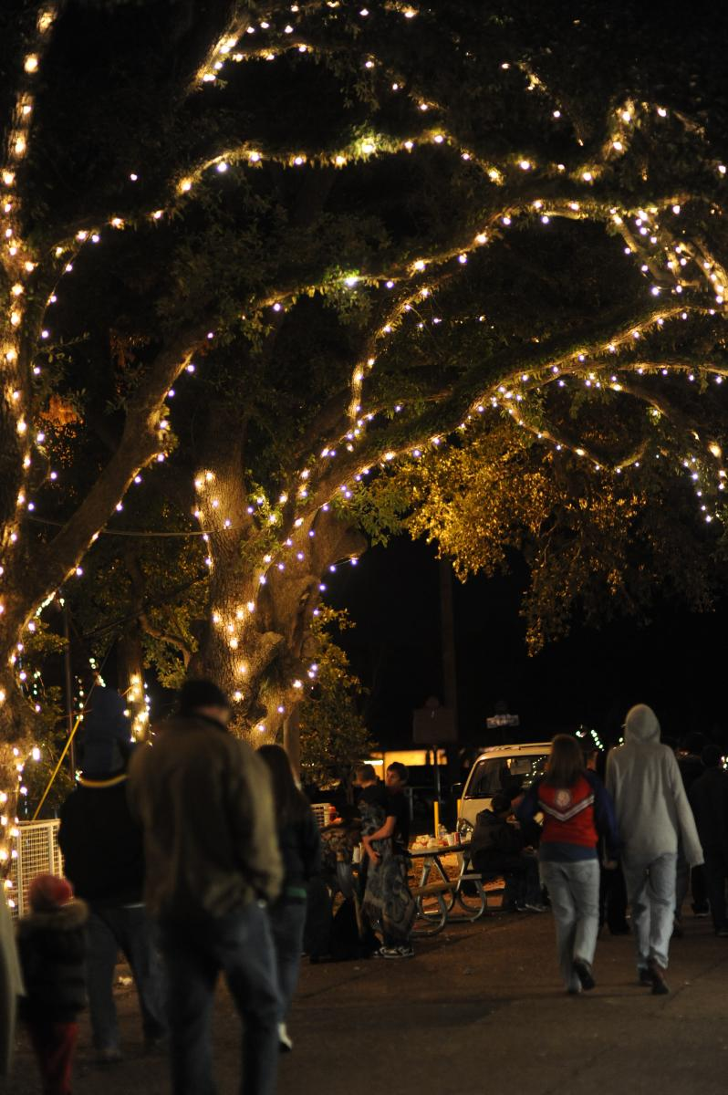 Oaks at Christmas Under the Oaks