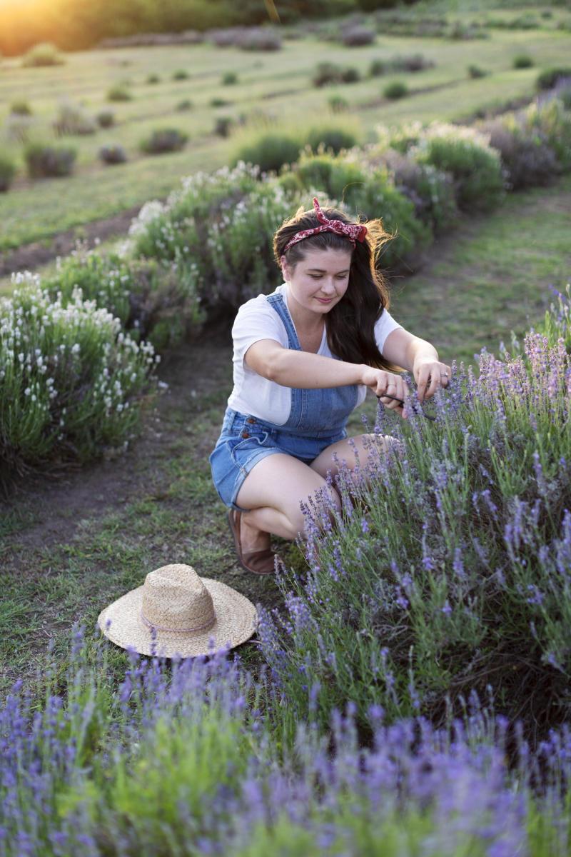 Prairie Lavender Farm - Bennington
