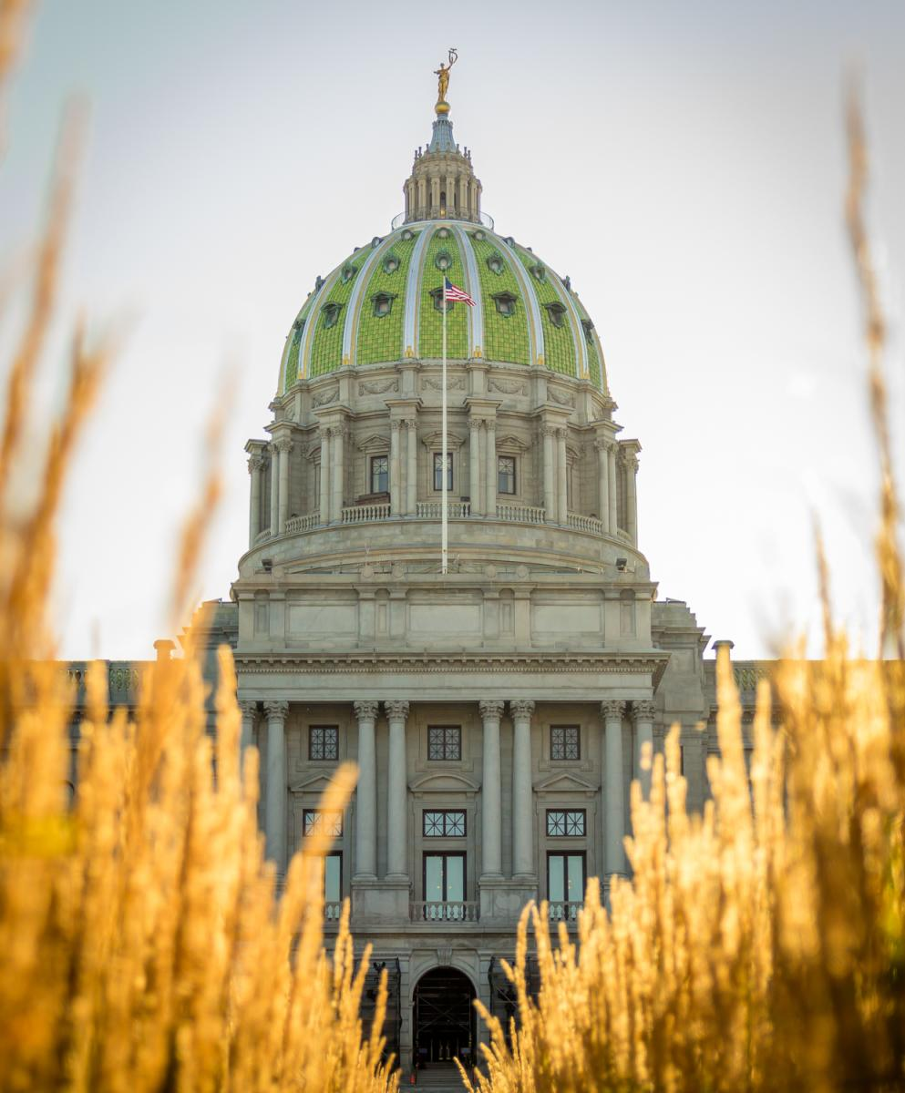 PA Capitol Complex-Harrisburg-Dome w Grass Framed Vertical-Exterior