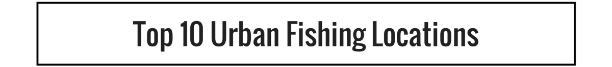 Top 10 Urban Fishing Locations