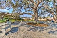 A beautiful outdoor picnic location on St. Simons Island, Georgia in the Golden Isles.