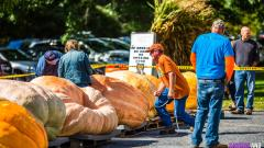 Saratoga Giant Pumpkinfest 2019