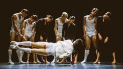 Nederlands Dans Theater 2 Presents Program of Four Works