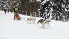 Annual Tug Hill Challenge Snowdog Race
