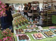 2011 Gardiner Cupcake Festival
