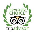 Trip Advisor Travelers Choice Logo