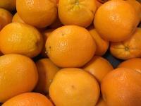 Oranges from Punta Gorda, FL