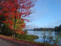 Lakeside Fall Colors