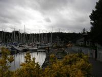 Day Trip: Explore Bainbridge Island