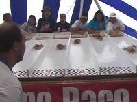 Day Trip: Crab Festival in Westport, Washington