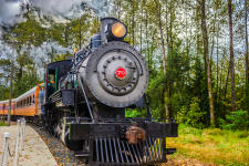 Mount Rainer Scenic Railroad + Museum