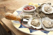 oysters fall