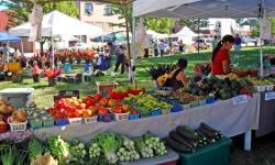 Lookout Farmers Market