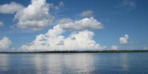 Aquatic Preserve Nature Boat Tour