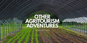 Other Agritoursim Adventures