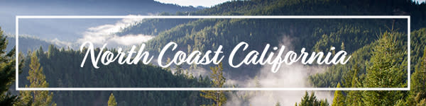North Coast California Wine Experience