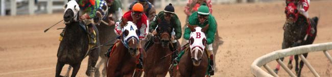 Gaming,  Horse Racing; Lake Charles casinos; Casinos in Louisiana; Delta Downs casino