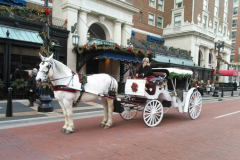 A horse-drawn carriage from Common Gentry Carriage Company in Grand Rapids