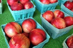 Hillside Orchards