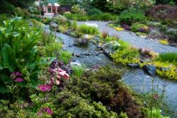 Top 5 Brown Bag Lunch Spots in Seattle Southside: Highline SeaTac Botanical Garden