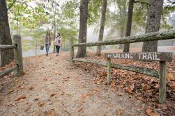 Lockerly Arboretum walking trails