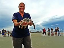 Sea Turtle Marine Science Center