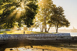 Stanley Park Seawall Runner