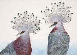 Allen Blagden (American, b. 1938), Victoria Crowned Pigeons, 1984, watercolor, 22 x 30 in., Private Collection, © Allen Blagden, Photograph by Don Perdue