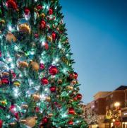 Village at Leesburg Christmas Tree