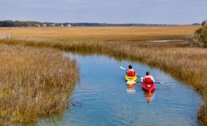 Kayaking the Golden Isles