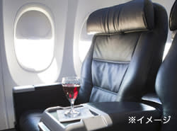 United Airlines seat