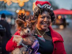 Dog & owner at Symphony of Lights