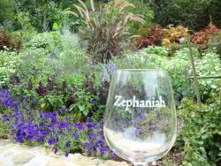 Zephaniah Farm Vineyard - Loudoun County, VA