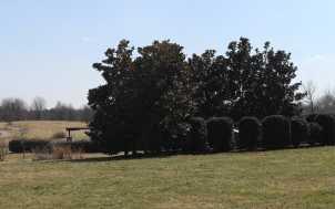 The Arboretum, Lexington